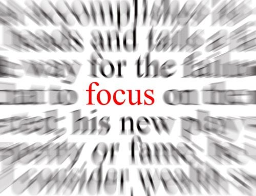 Back Into Focus